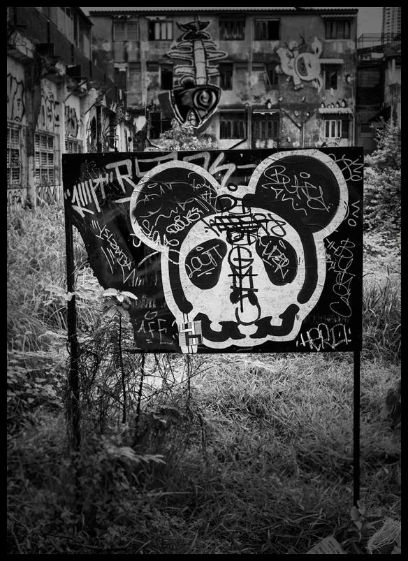 MickySkull