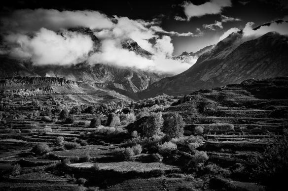 Muktinath-Terraces